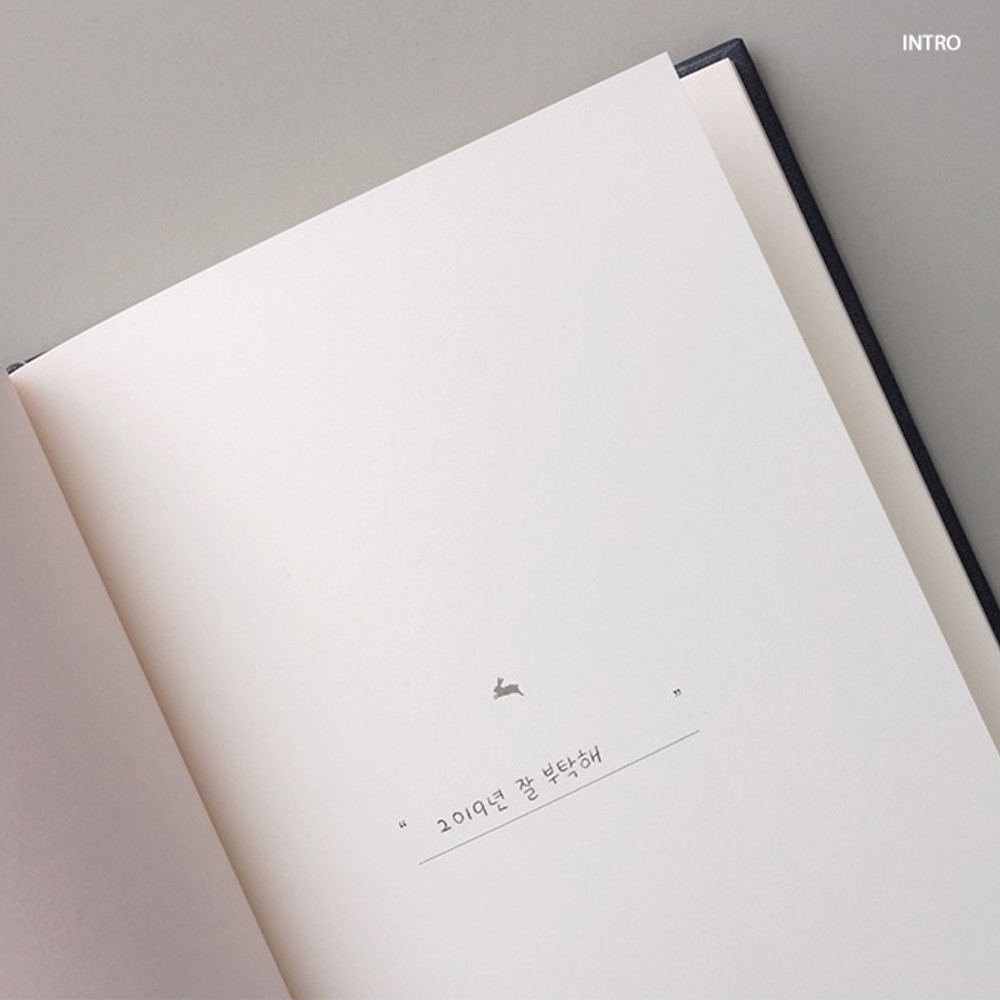 Intro - Moon rabbit hardcover undated weekly diary planner