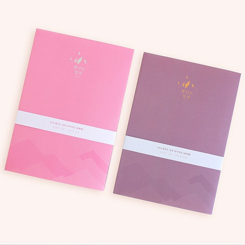 2019 Bright day dated weekly diary