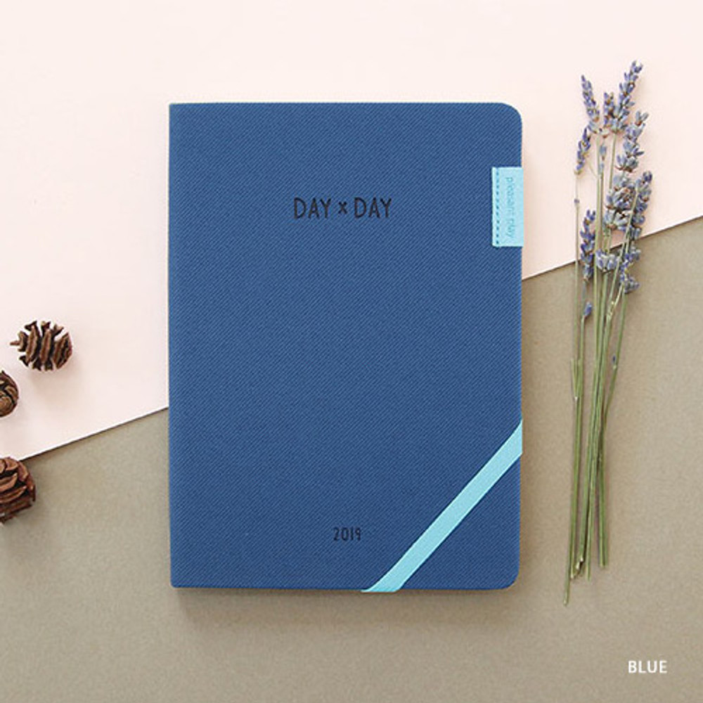 Blue - 2019 Day by Day large dated weekly diary