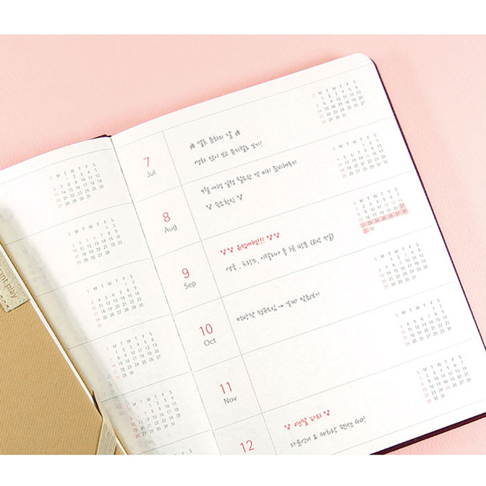 Yearly plan - 2019 Day by Day large dated weekly diary