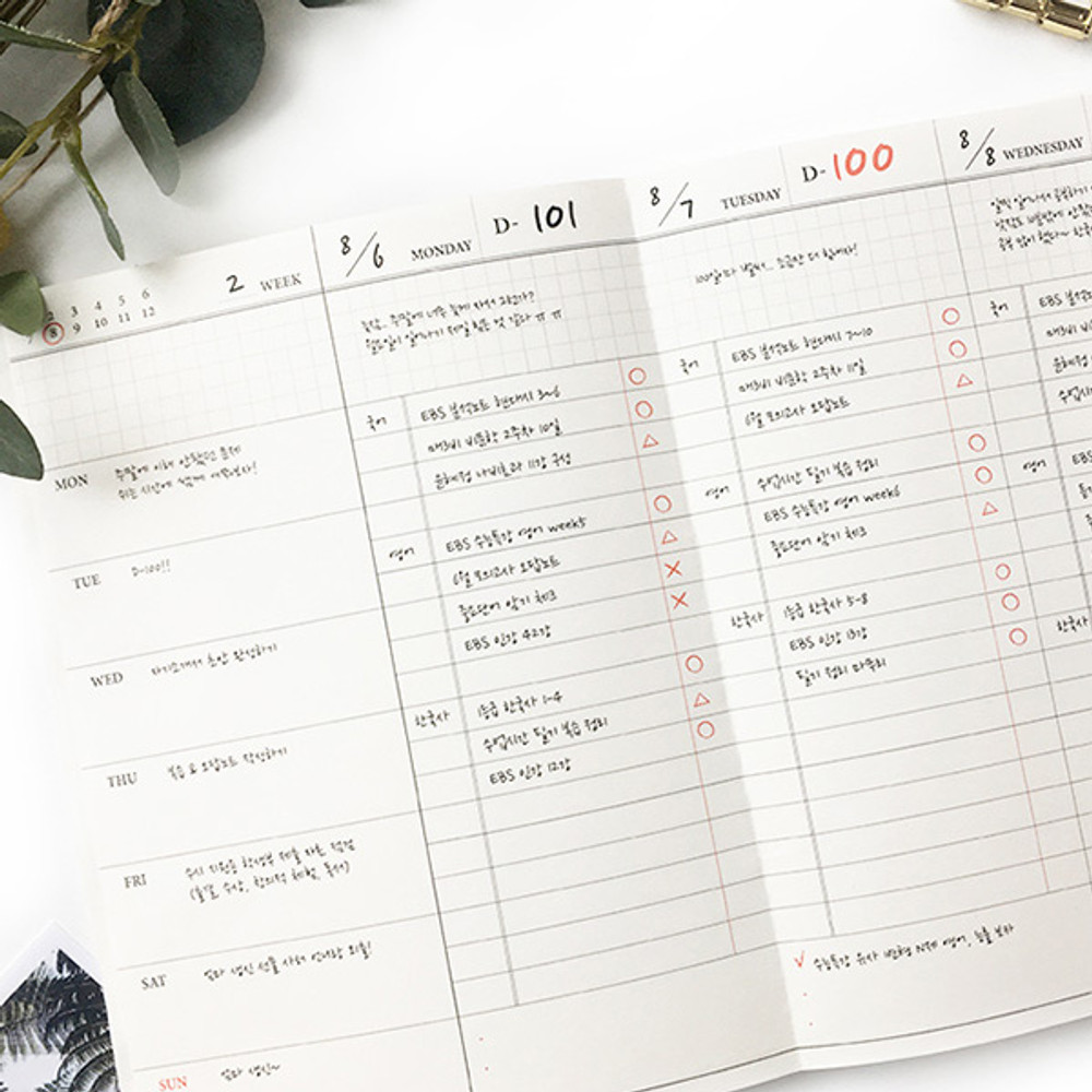 Weekly plan - O-CHECK Spring come dateless 6 month study planner