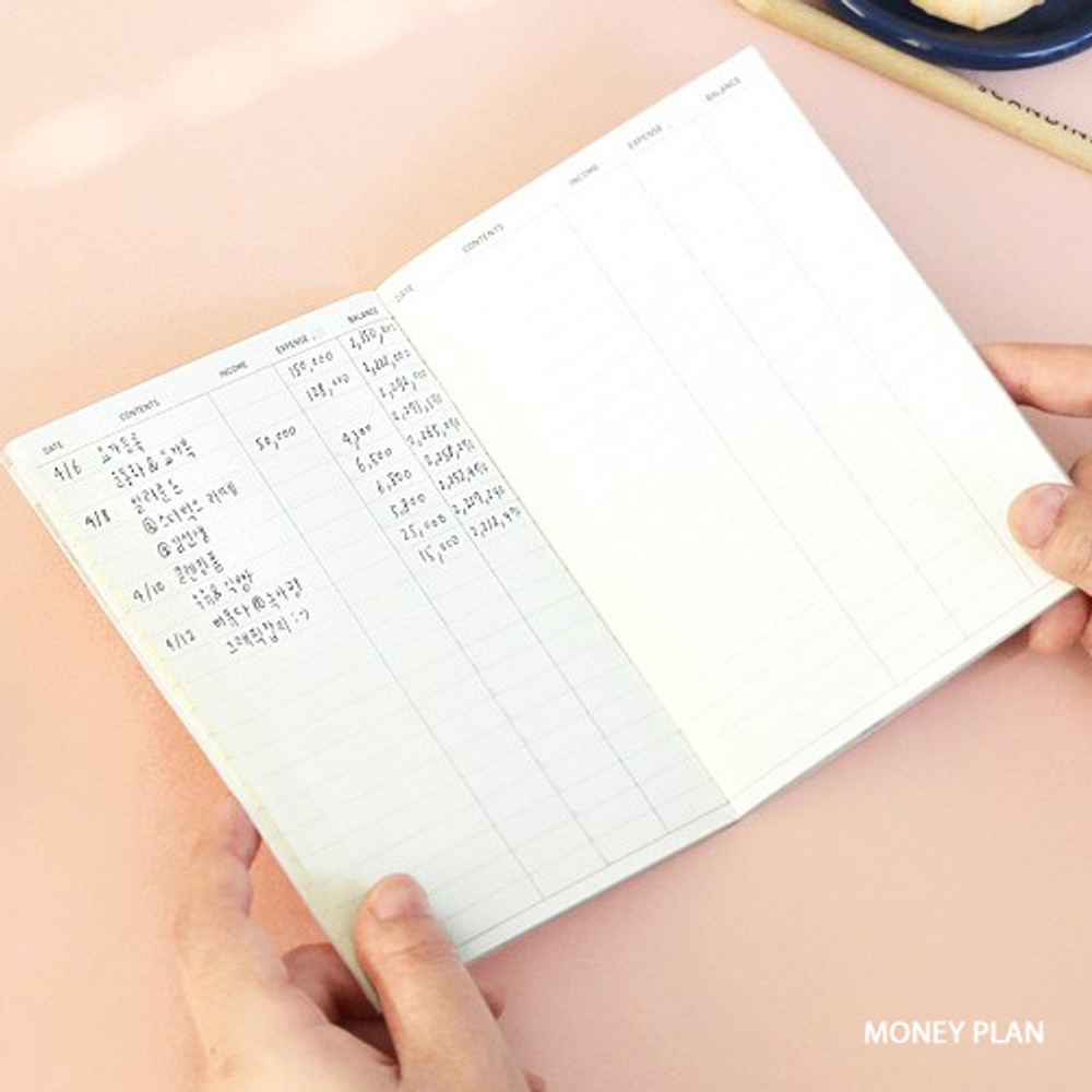 Money plan - ICONIC Flamingo A6 size cash book planner