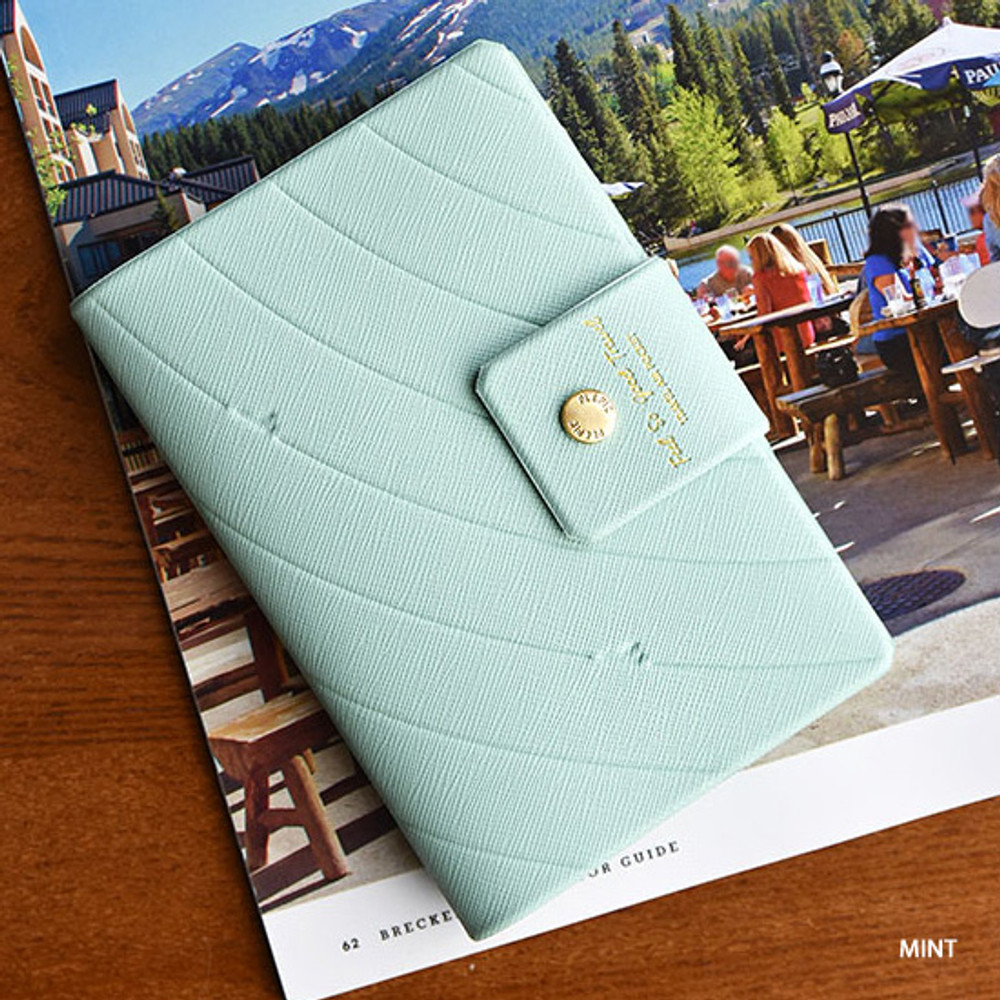 Mint - Play Obje Airline travel passport case holder