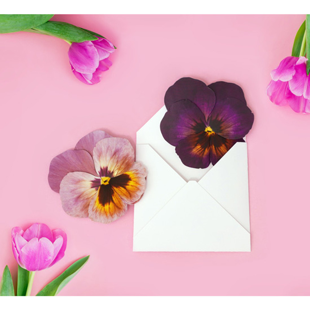 Example of use - ABJECTION Pansy flower card and envelope set ver2