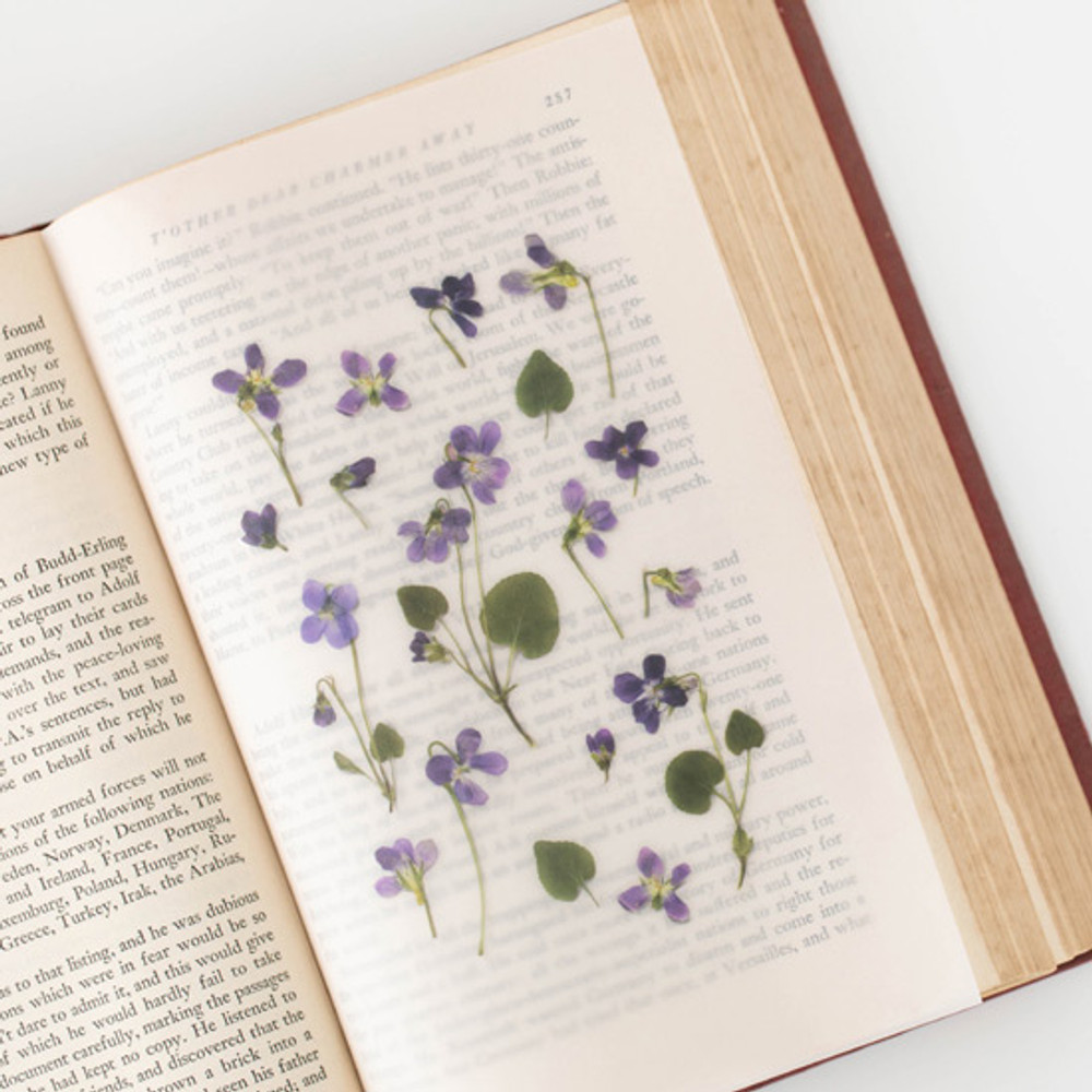 Example of use - Appree Manchurian violet press flower stickers