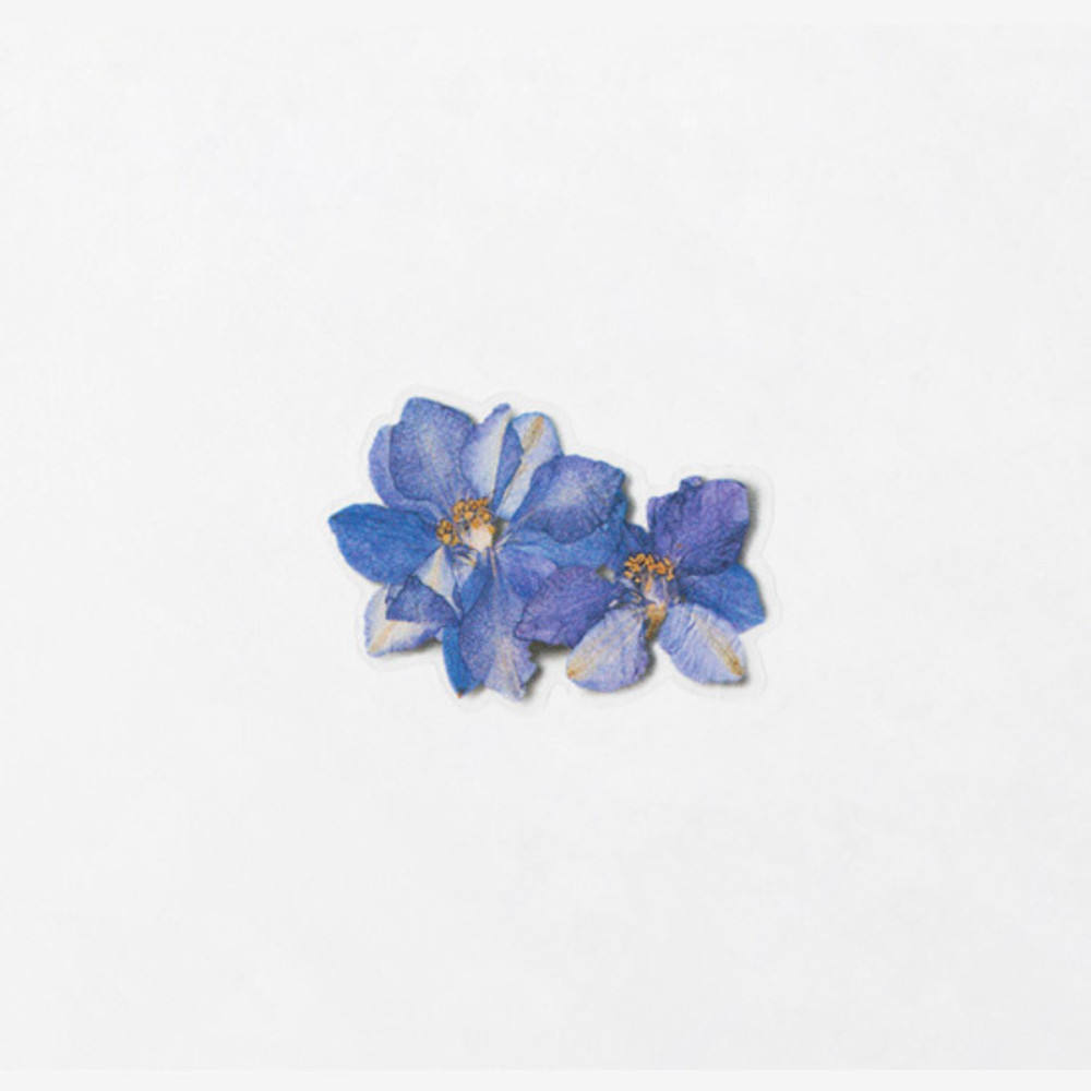 Example of use - Appree Larkspur press flower stickers