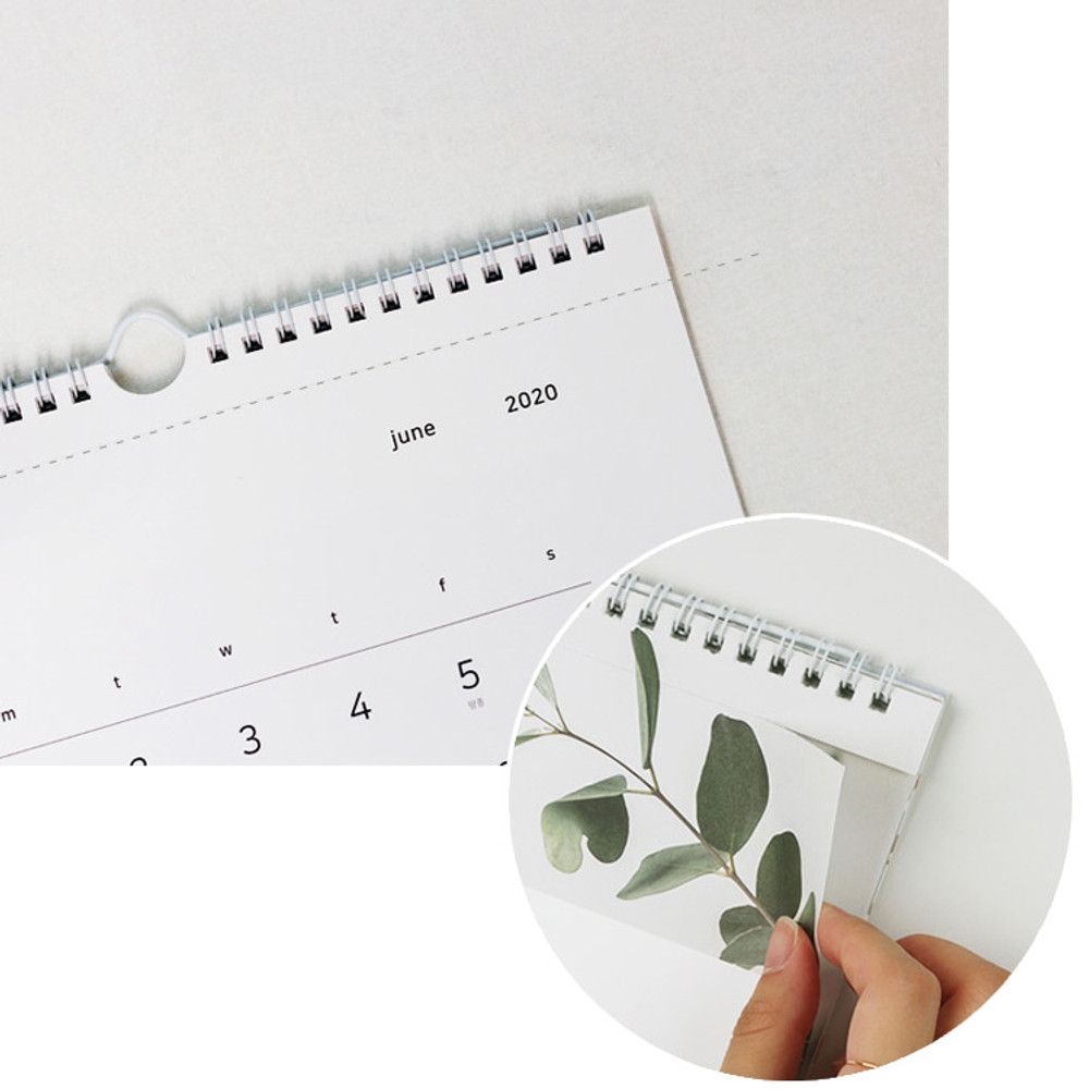 Easy tear off - Dash and Dot 2020 Slow life monthly wall calendar