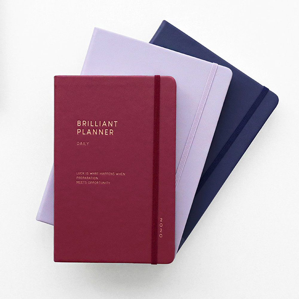 ICONIC 2020 Brilliant dated daily planner scheduler