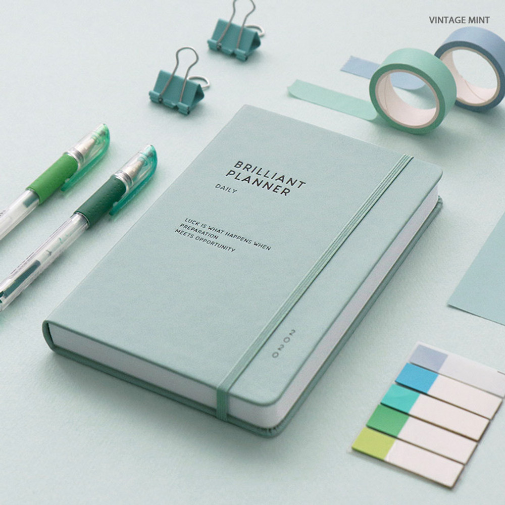 Vintage mint - ICONIC 2020 Brilliant dated daily planner scheduler