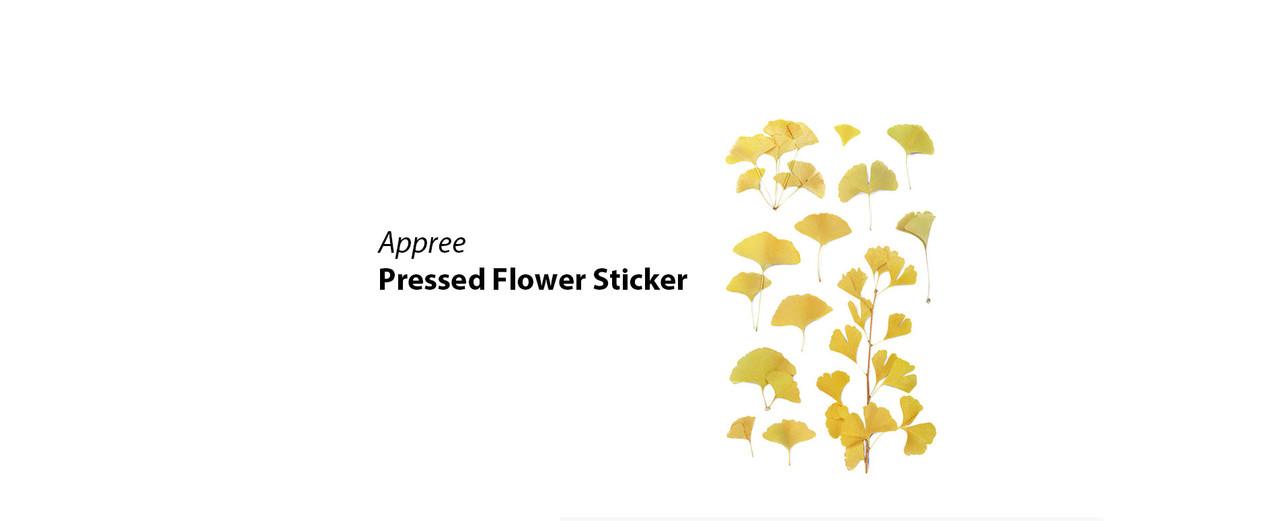 Appree pressed flower sticker
