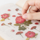 Usage example - Appree Mini rose press flower deco sticker