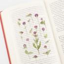 Usage example - Appree Globe amaranth pressed flower deco sticker