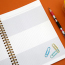 Grid page - Oh-ssumthing O-ssum spiral lined grid blank notebook