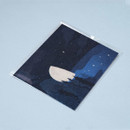 Package - Ardium The memory of the moon postcard