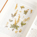 Usage example - Appree Mimosa pressed flower sticker