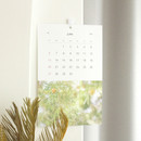 Dash and Dot 2021 Slow life monthly wall calendar