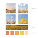 Size - Meri Film Autumn color chips translucent sticker set