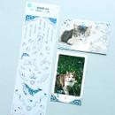 PLEPLE Chou Chou twinkle clear color line sticker
