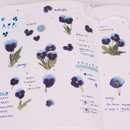Usage example - Appree Pansy pressed flower sticker