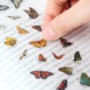 Appree Butterfly nature clear sticker