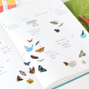 Usage example - Appree Butterfly nature clear sticker
