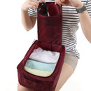 Wine - Travel zip shoes pouch bag