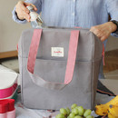 Gray - Picnic insulated cooler tote bag