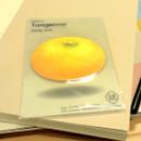 Tangerine sticky memo notes