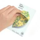 Leaf sticky memo notes 20 sheets - C