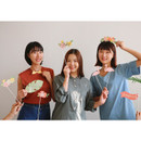 Dailylike Holiday photo stick props set