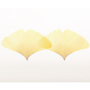 Ginkgo leaf transparent sticky memo notes Medium