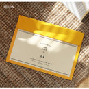 Yellow - Aire A4 size file folder pouch
