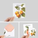 Detail of Vintage fruits illustration card set