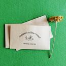 Comment allez-vous small envelope set