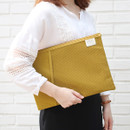 Mustard - A low hill basic mesh pocket file pouch