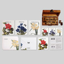 Flower illustration card set ver.4