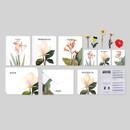 Flower illustration card set ver.6