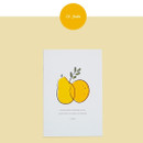 Fruits - Dash and Dot Ordinary illustration message postcard