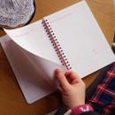 N.IVY Pink 100 days spiral study planner