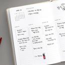 Weekly plan - 2019 Brilliant simple dated weekly planner