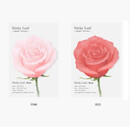 Color - Appree Rose small sticky memo notes