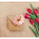 Example of use - ABJECTION Wild Rose card and envelope set