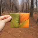 How to use - ABJECTION Tree leaf 3 cards set