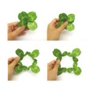 How to use - ABJECTION Four leaf clover cards and envelope se
