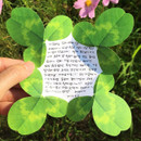 ABJECTION Four leaf clover cards and envelope se