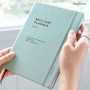 Vintage mint - ICONIC 2020 Brilliant dated weekly planner scheduler