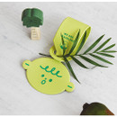 Green - Gyou Girl and boy travel luggage name tag