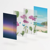 Appree Tropical night nature scene sticker set