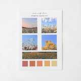 Meri Film Autumn color chips translucent sticker set