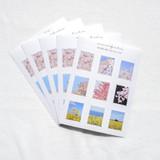 Meri Film Spring flowers post stamp sticker sheets set